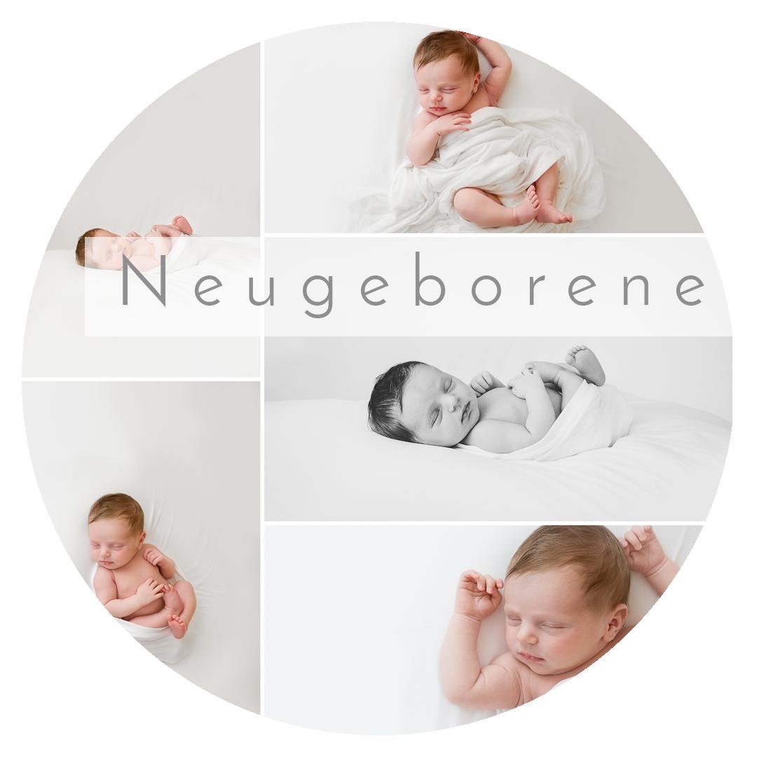 Link zu den Infos zur Neugeborenen-Fotografie